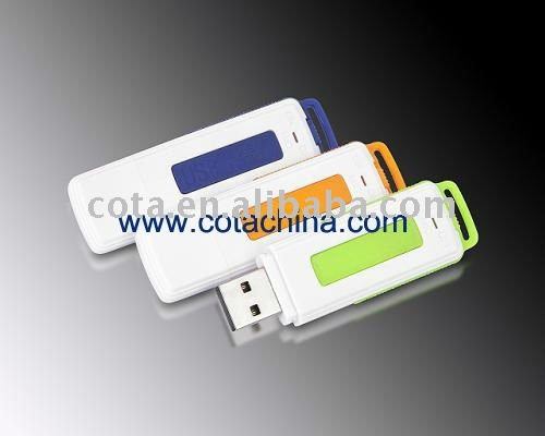New Chip USB Flash Drive with voice recorder function 4GB CT-DVR008