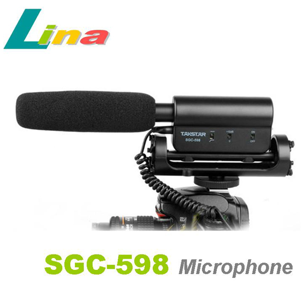 Professional DV Stereo Microphone Mic For Camcorder Video Cameras 550D 7D 5D II